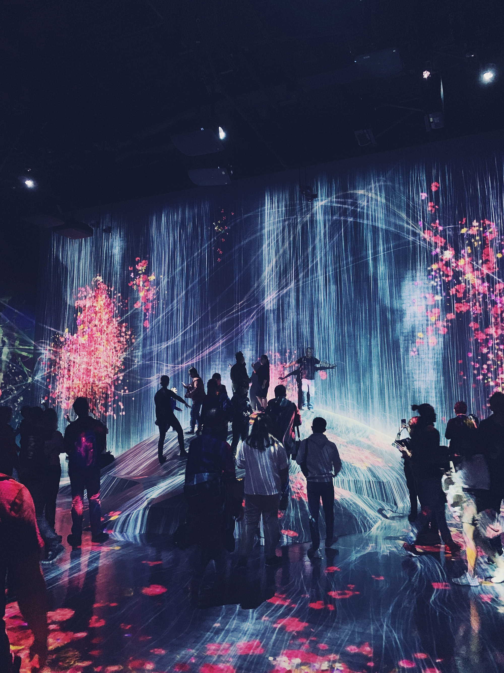 5-day Tokyo Itinerary - teamLab Borderless