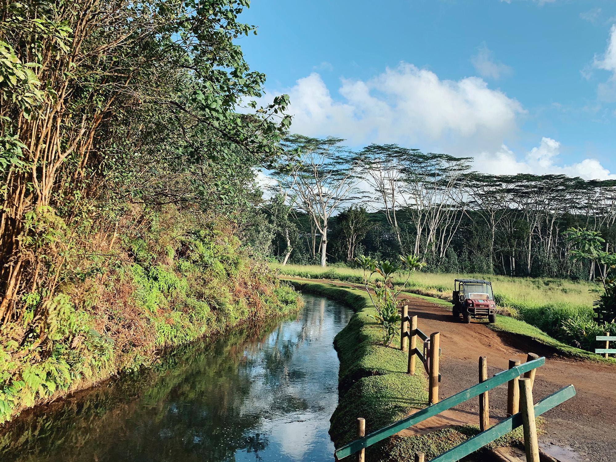 Hawaii Itinerary Kauai Backcountry Mountain Tubing