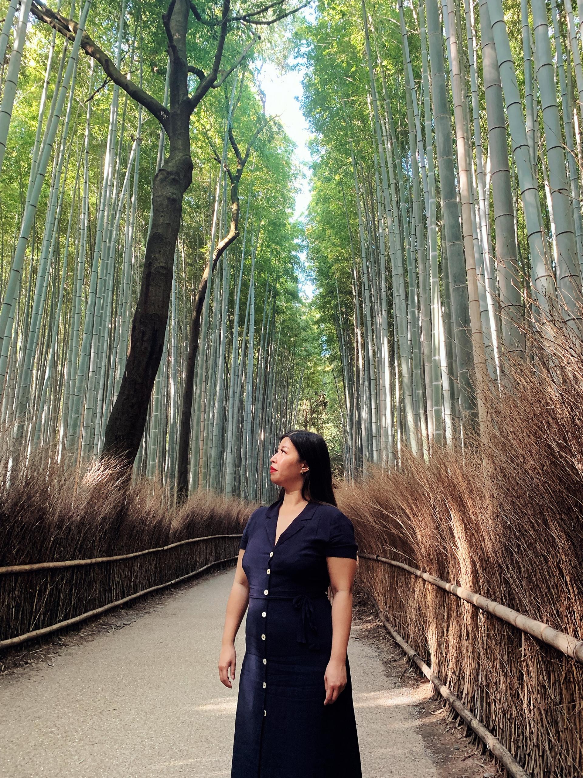 Kyoto Guide - Arashiyama Bamboo Grove