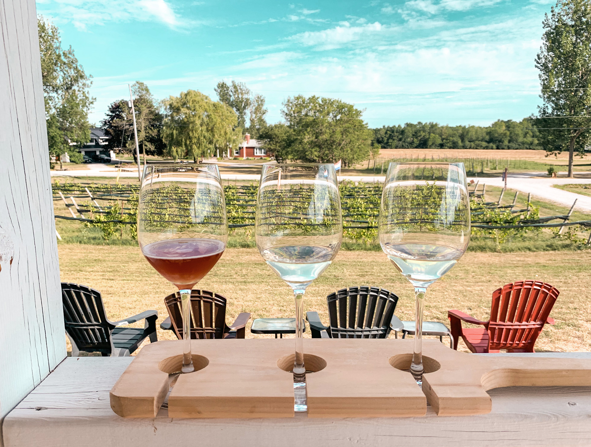 Prince Edward County wineries - Lacey Estates