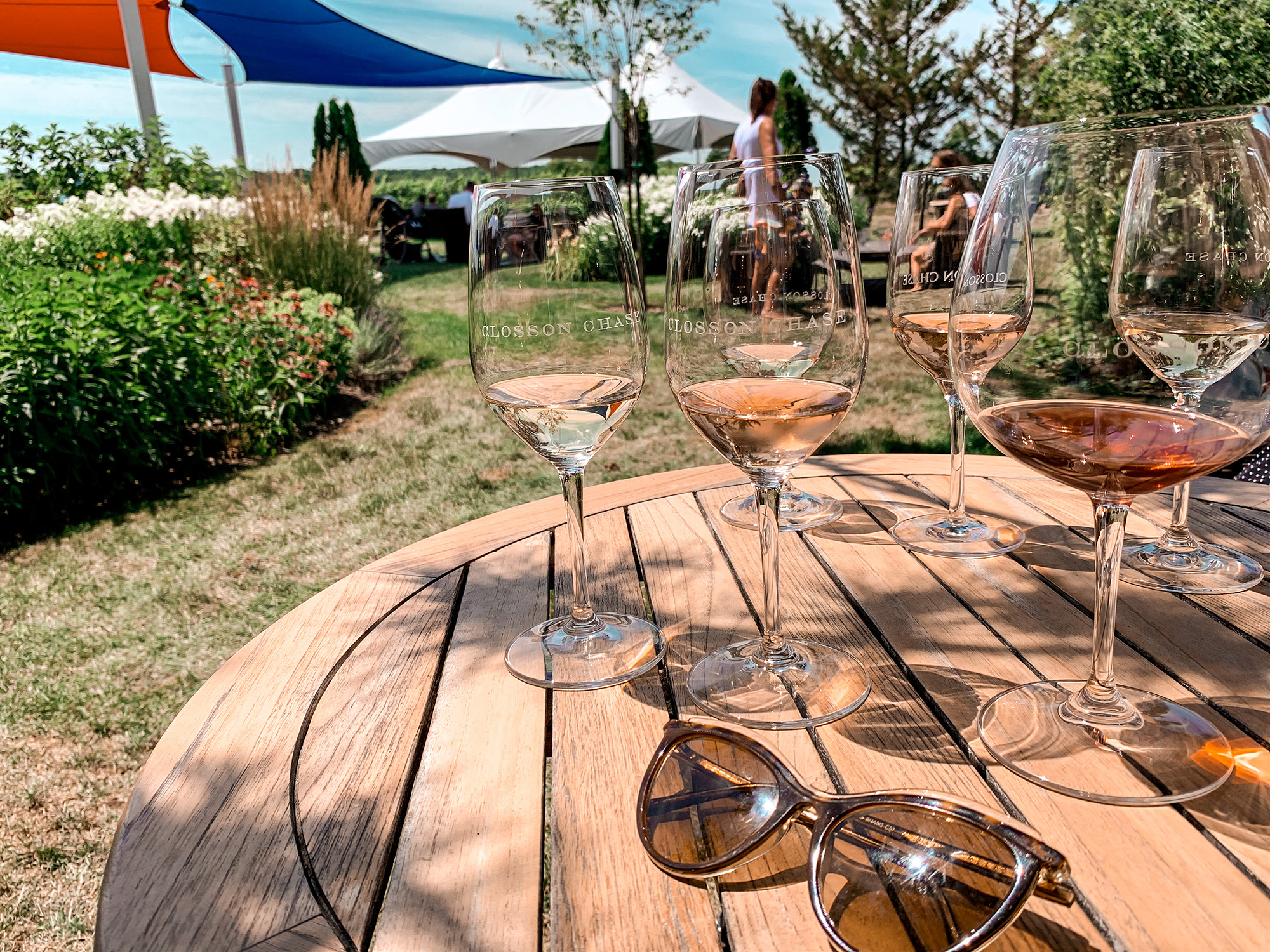 things to do in Prince Edward County - wine tasting
