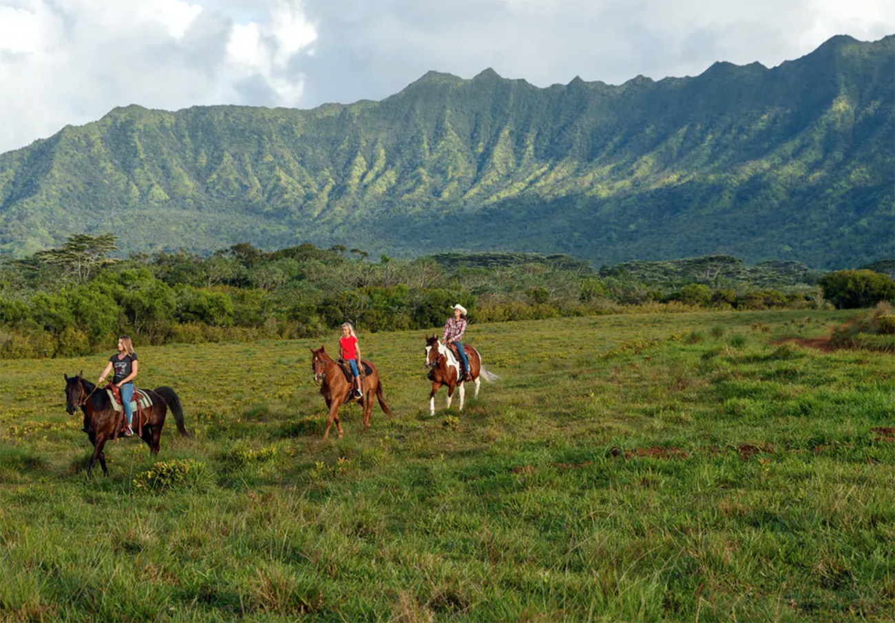 things to do in Kauai - Princeville ranch