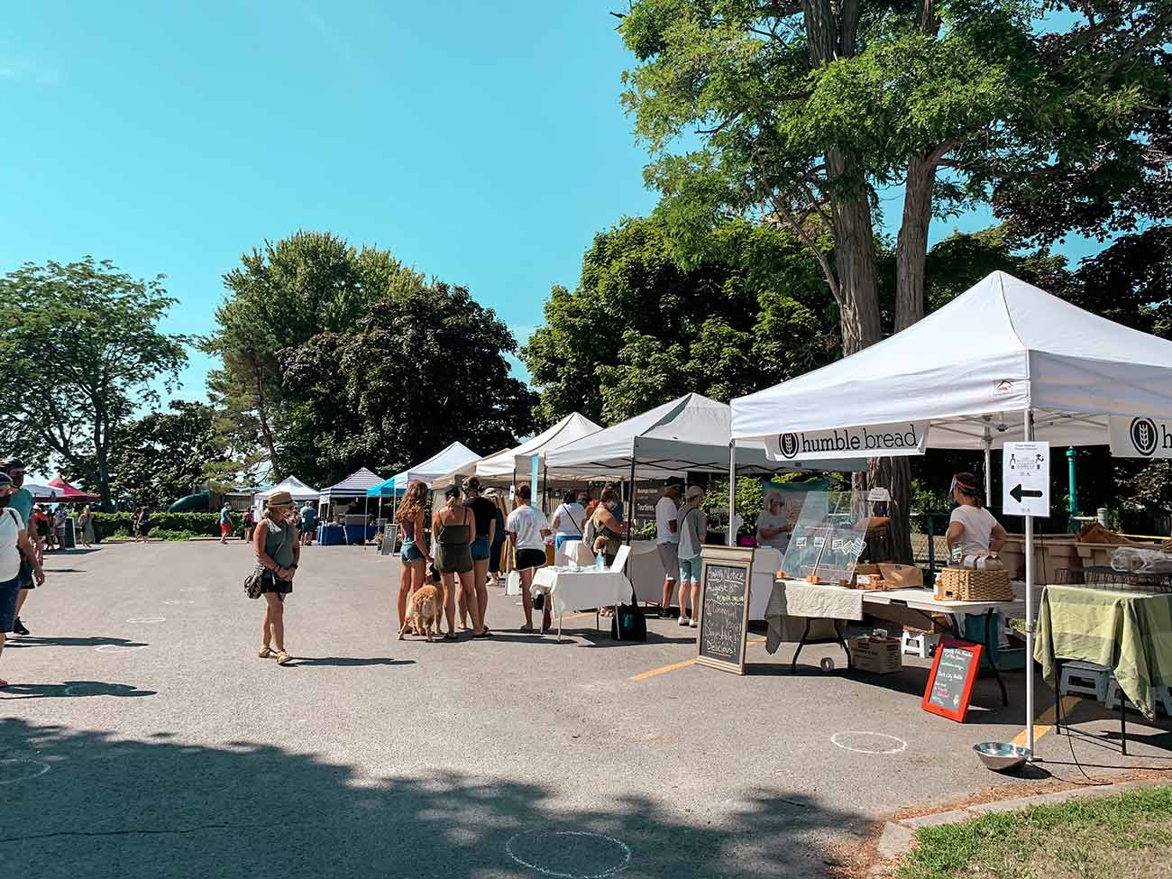 things to do in Prince Edward County - Farmers' Markets